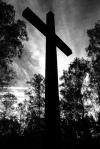 cross in woods